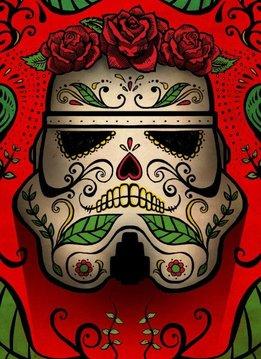 Star Wars Muerte - Star Wars Masked Troopers Displate