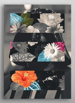 Star Wars Darth Vader Flowers -Force sensitive prints - displates