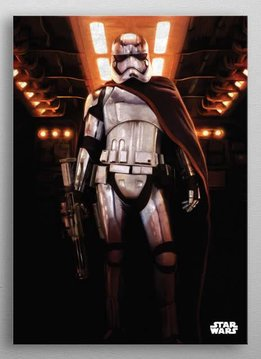 Star Wars Captain Phasma -The Force Awekens- Displate