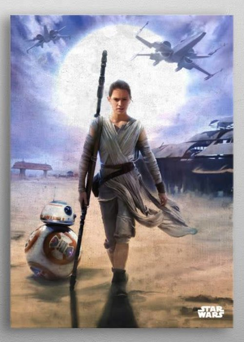 Star Wars Rey and BB-8 | The Force Awakens |  Displate