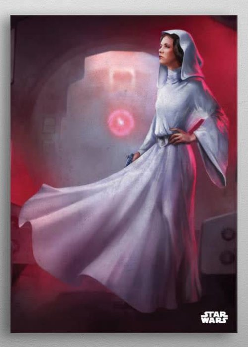 Star Wars Leia  | Episode IV A New Hope