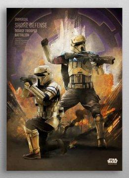 Star Wars Scarif Trooper -Rogue One Key Forces-Displate