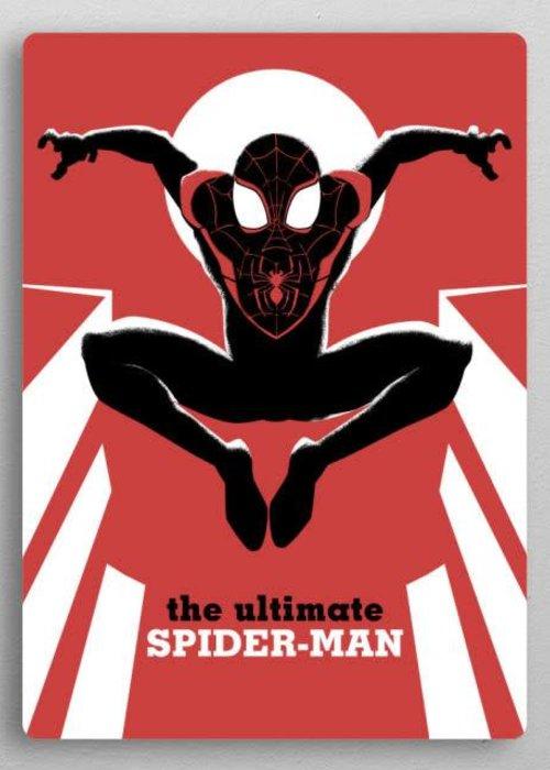 Marvel Spider-Man  |  Marvel Now