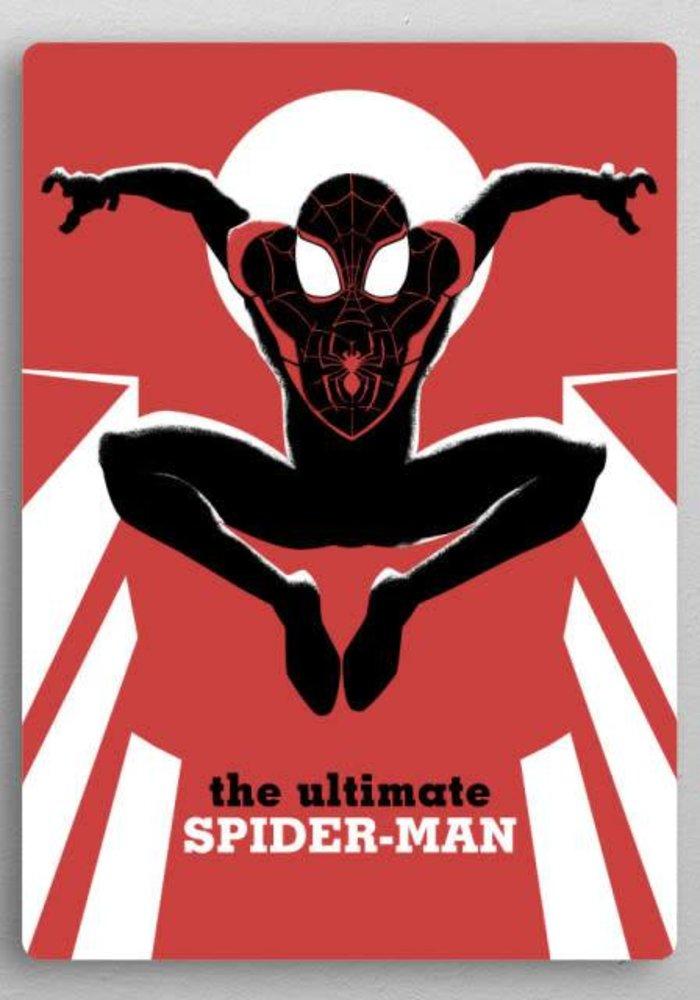 Spider-Man  |  Marvel Now