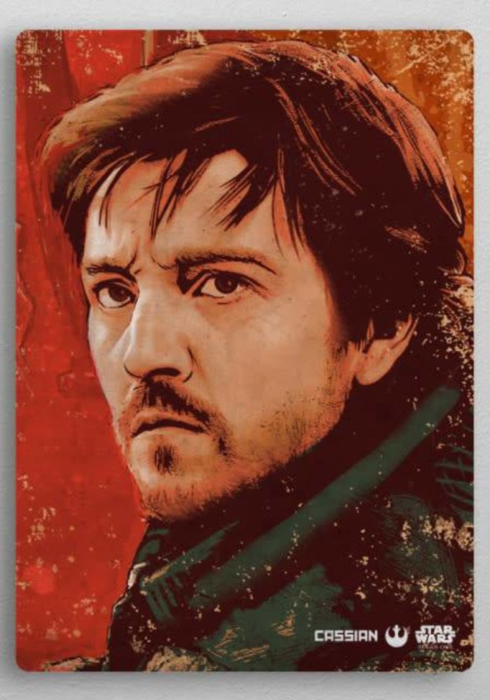 Cassian Andor  | Rogue One Wanted
