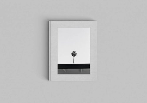 Cereal Magazine Palm