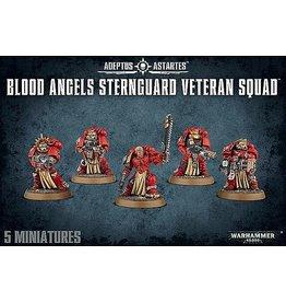 Games Workshop Blood Angels Sternguard Veteran Squad
