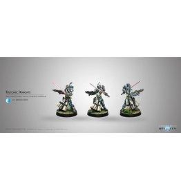 Corvus Belli Teuton Knights (Combi Rifle, D.E.P.)