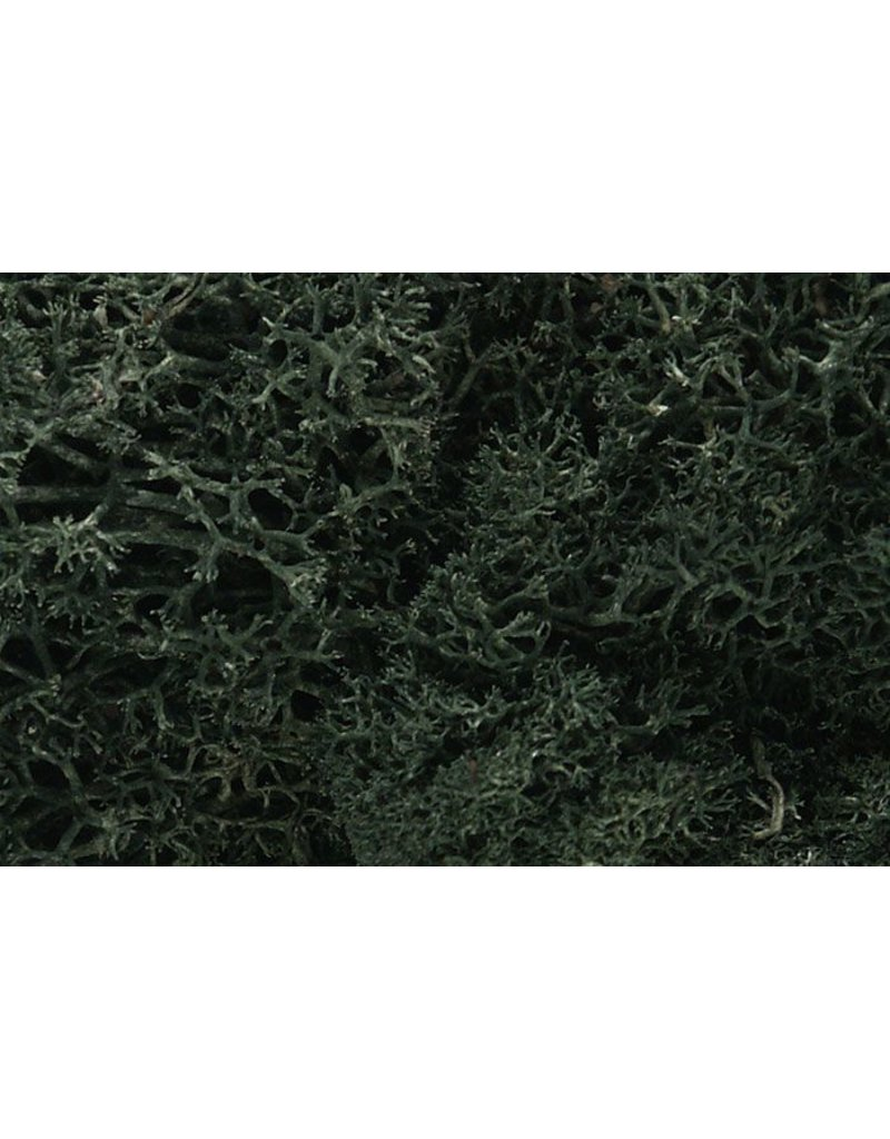 Woodland Scenics DARK GREEN LICHEN