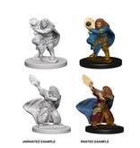 Wizkids Nolzur's Marvelous Miniatures: Dwarf Female Wizard Blister Pack (Wave 4)