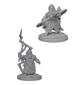 Wizards of the Coast Dwarf Male Sorcerer