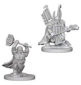 Wizards of the Coast Dwarf Male Paladin