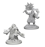 Wizkids Nolzur's Marvelous Miniatures: Dwarf Female Cleric Blister Pack (Wave 4)