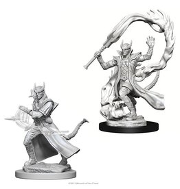 Wizards of the Coast Tiefling Male Sorcerer