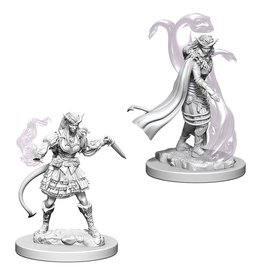 Wizards of the Coast Tiefling Female Sorcerer