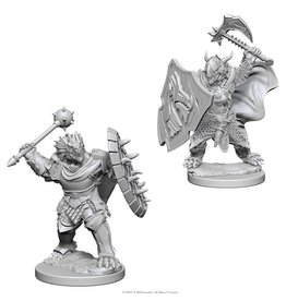 Wizards of the Coast Dragonborn Male Paladin