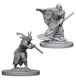 Wizkids Elf Male Druid