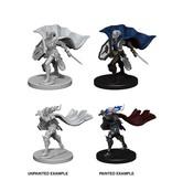 Wizkids Pathfinder Deep Cuts: Elf Female Paladin Blister Pack (Wave 4)