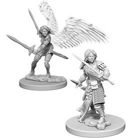 Wizards of the Coast Aasimar Female Paladin