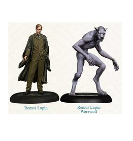 Knight Remus Lupin