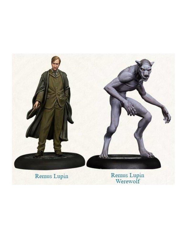 Knight Remus Lupin + Remus Werewolf Miniatures Pack
