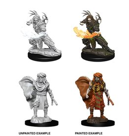 Wizkids Male Human Druid (Wave 6)