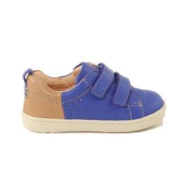 Ocra 497 blu reale