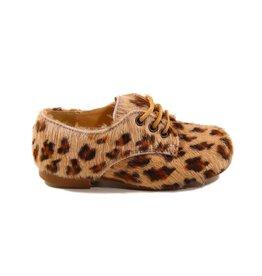 Eli 2369 potro jirafa