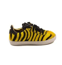 Momino 3440 portog giallo