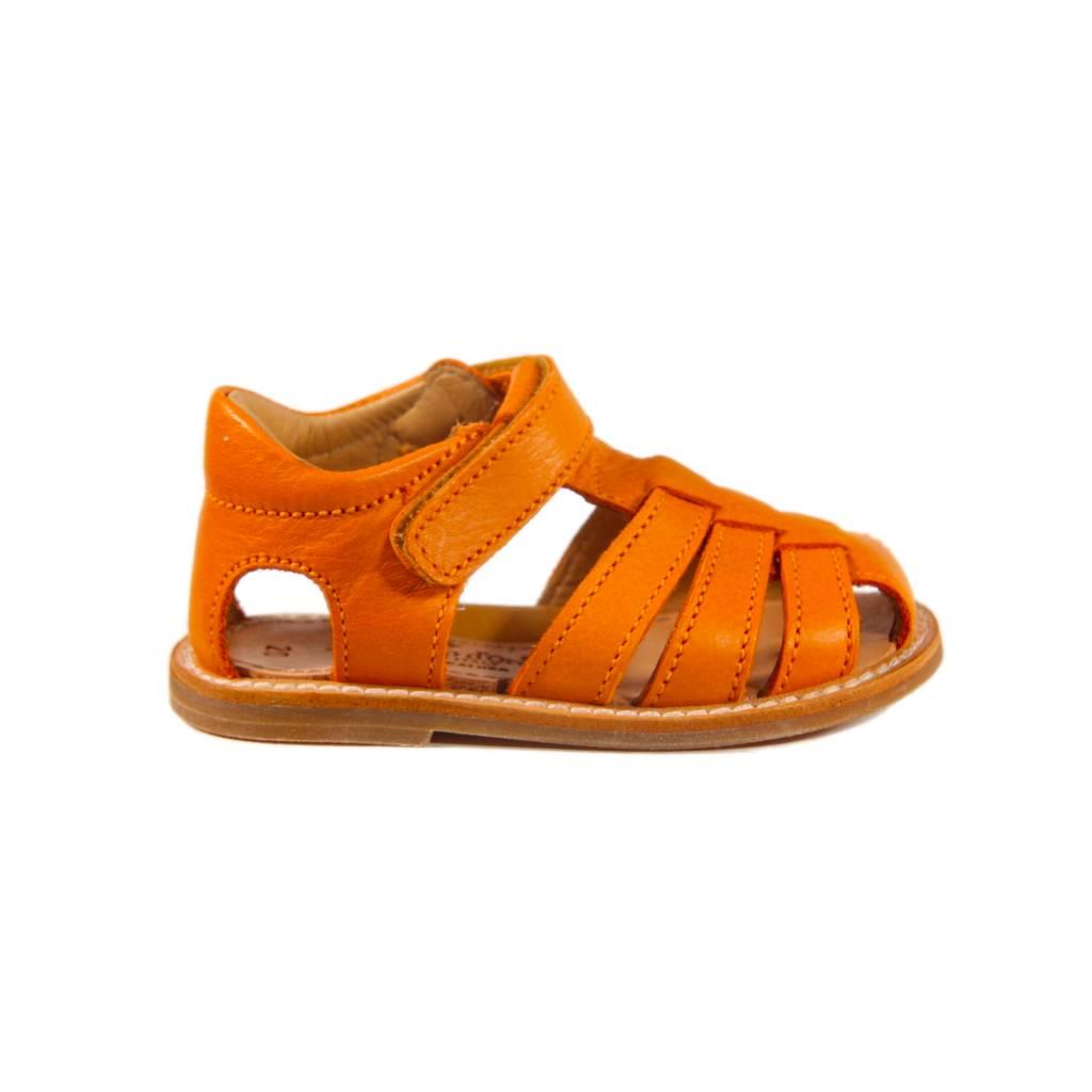 Zecchino d'oro A31-3106 oranje
