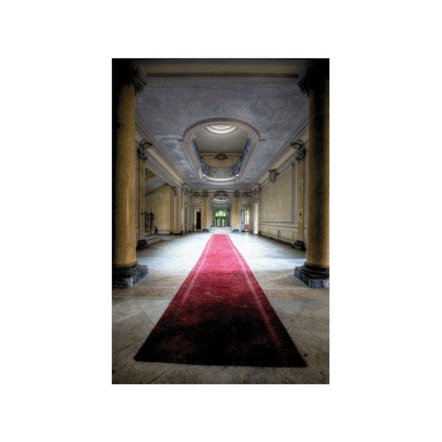 Mondi-Art Alu Art LaCour Red Carpet