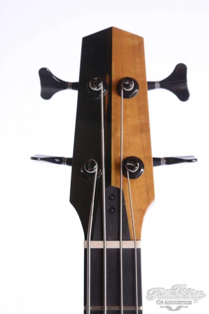 Michael Dunn Gypsy Jazz BASS