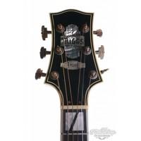 Triggs Stromberg Master 400 Black 2013