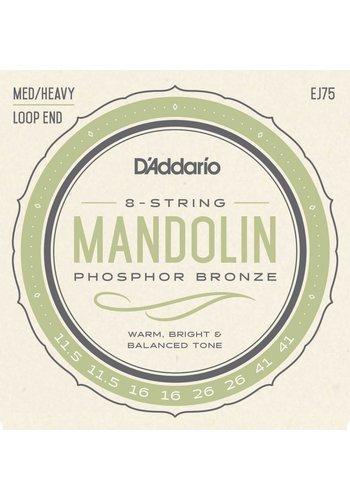D'addario D'Addario EJ75 8 - string Mandolin Strings Phospor Bronze, Medium 11.5 - 41