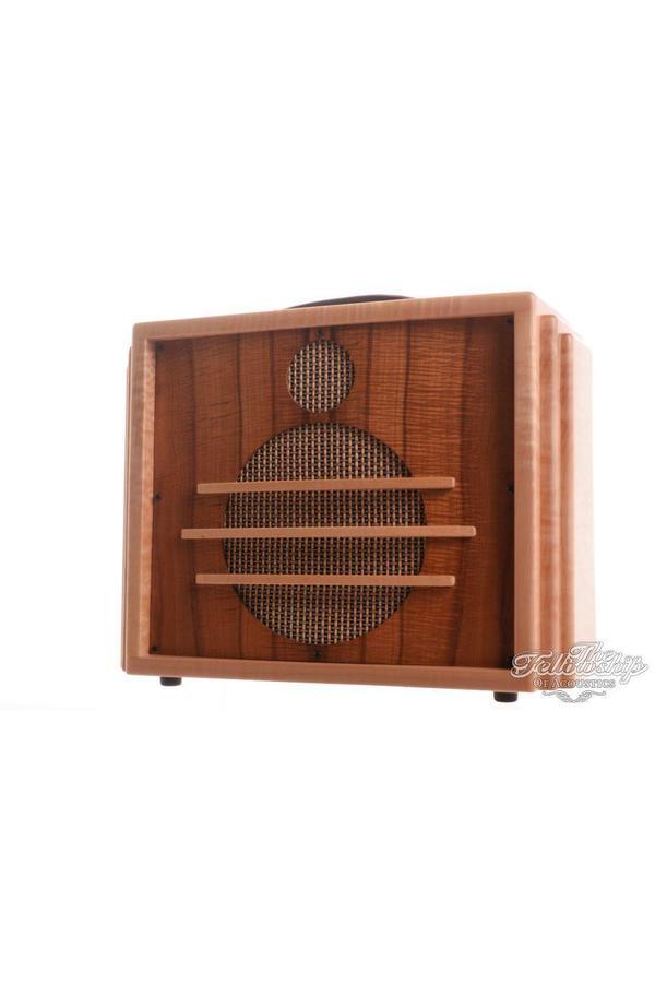 Taylor Builders Reserve V Series Expression System Amplifier 2012