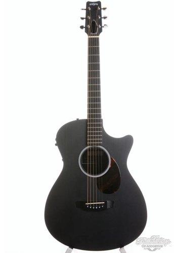 Rainsong Rainsong SFT 12 fret carbon cutaway guitar