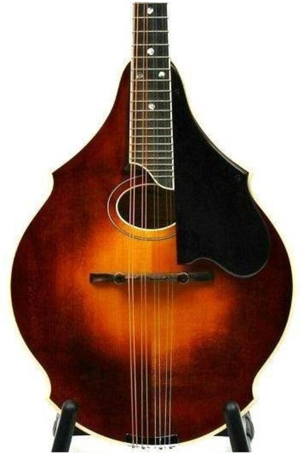 Eastman David Grisman DGM2 Mandolin
