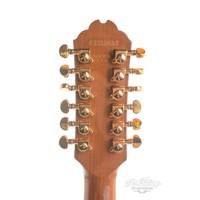 Gibson Chet Atkins SST 12 string ex Jan Akkerman 1989