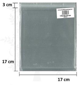 Hobbycentraal Vierkante Kaartenzakjes met plakstrip 100st 170x170x35