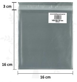 Hobbycentraal Square Card bags with adhesive strip 100st 160x160x35
