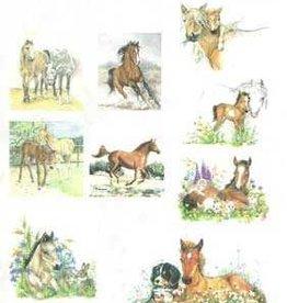 Hobbytheek Fotovellen  Paarden Hobbytheek