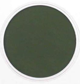 Pan Pastel PanPastel Chrom.Oxide Green Extra Dark