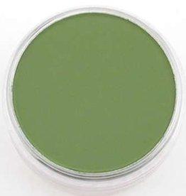 Pan Pastel PanPastel Chrom.Oxide Green