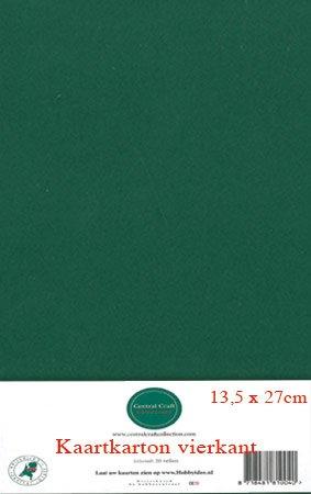 Hobbycentraal 13,5 x 27 cm Kaartkarton   20 vel  kerst groen