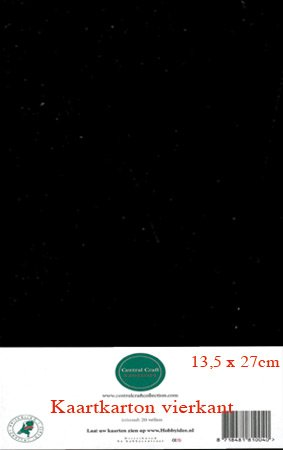 Hobbycentraal 13,5 x 27 cm Kaartkarton   20 vel  zwart