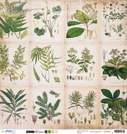 Studiolight SCRAP (10) 200 G. DUBBELZIJDIG, 304X304 MM, ROMANTIC BOTANIC 03