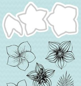 Studiolight Stamp & Die Cut (1) A6 Basics Nr.10