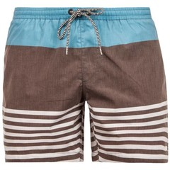 Protest Crusher Boardies Asphalt Grey