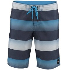 O'Neill Clothing Santa Cruz Stripe Boardies Blue AOP