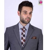 English Fashion Checkered Tie Brown